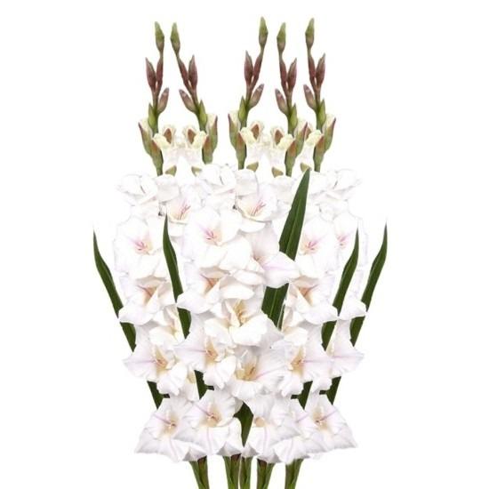/decoratie-materialen/kunstbloemen--planten/kunstbloemen/alle-kleuren-soorten-kunstbloemen