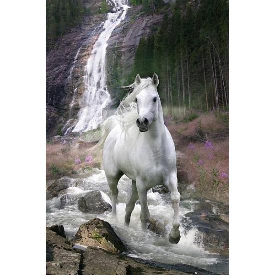 Muur decoratie wit paard van Bob Langrish